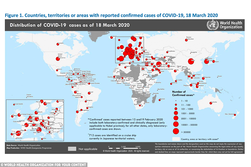 15,000 new coronavirus cases, 786 new deaths in past 24 hours- WHO Report » Your Content
