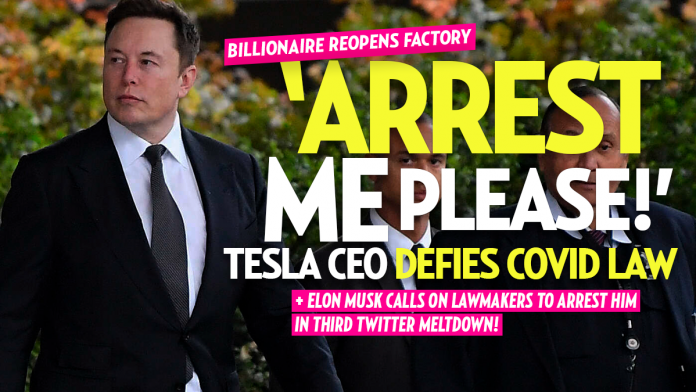 Elon Musk Defies COVID Rules, Reopens Tesla on His Own: 'If Anyone Is Arrested I Ask It Be Me'
