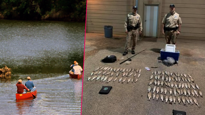 Police Seize 105 Illegal Fish During Routine Search and Donate Them to Nearby People