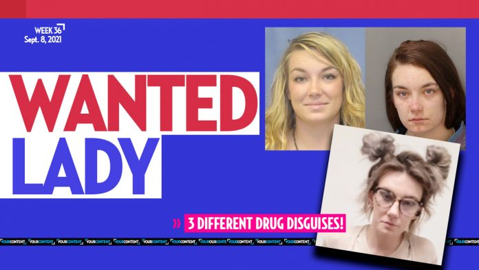 Pennsylvania FUGITIVE Brittnay Hogan confuses cops with 3 different disguises